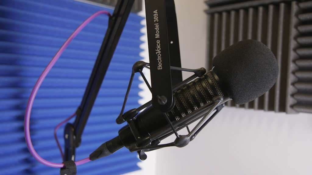 Electro Voice 309A Shock Mount